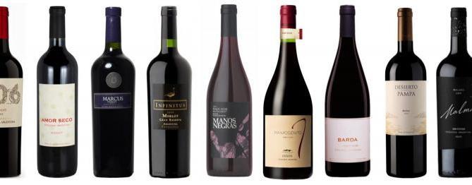 Mis vinos Patagónicos Preferidos