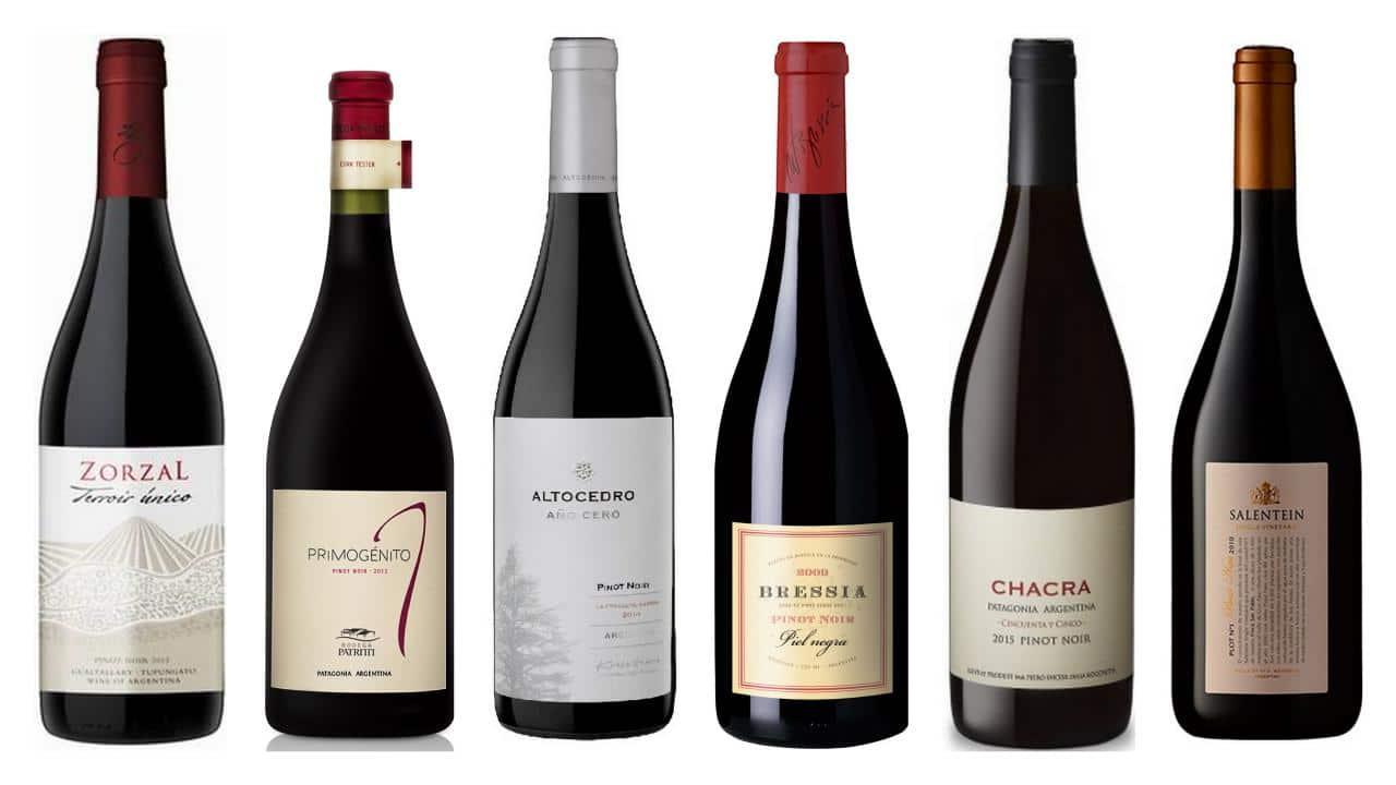 Mis 6 Vinos Pinot Noir – #QueseCepa más de Pinot Noir