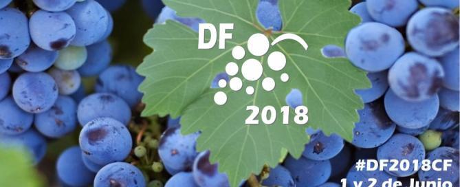 El Desafío Federal 2018 - #DF2018CF
