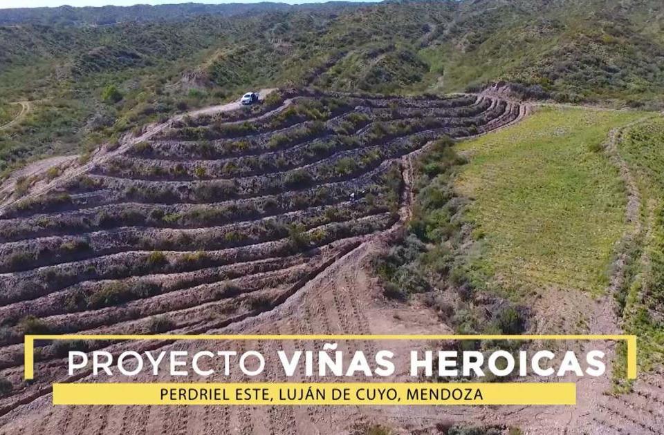 Viñas Heroicas