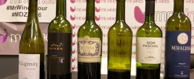 Catando Merlot a ciegas con los Argentina WineBloggers 1
