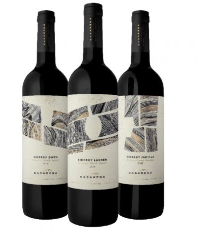 Casarena Bodega y Viñedos presentó vía Zoom sus Sinergy Vineyard Blend (1)
