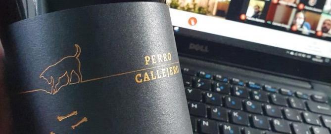 Mosquita Muerta Wines presentó la nueva cosecha de Perro Callejero Pinot Noir 2019