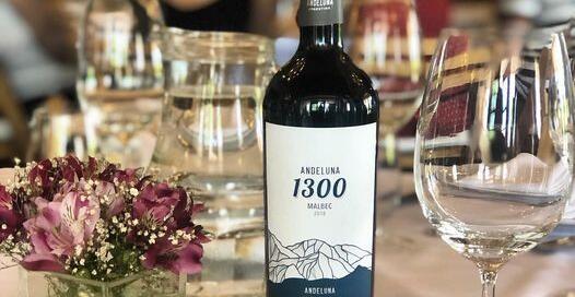 Andeluna 1300 Malbec de Montaña