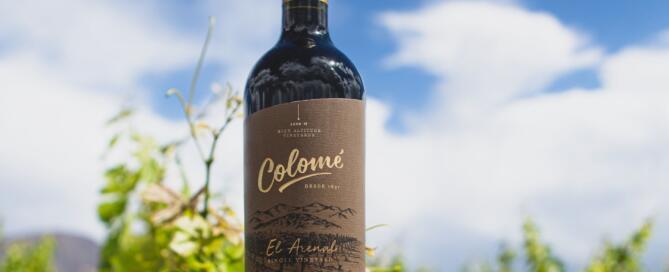 El Arenal Single Vineyard Malbec 2019 de Bodega Colomé