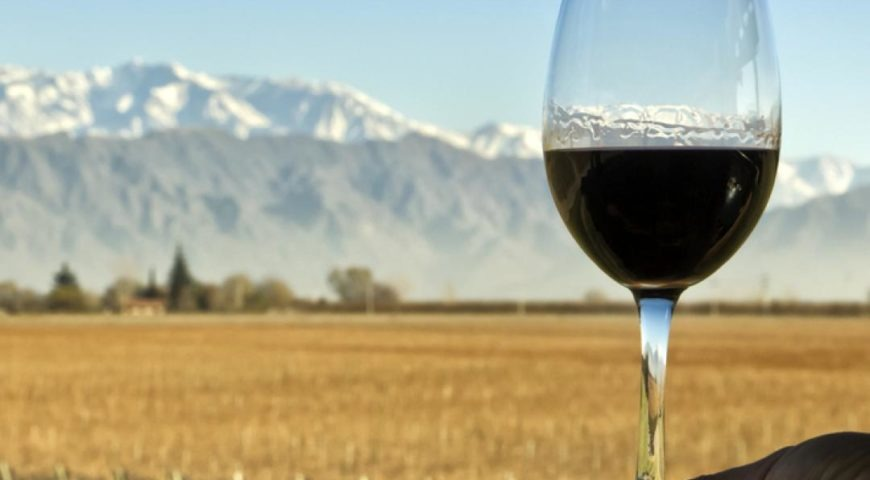 Malbec Argentino - el varietal más exportado de Argentina