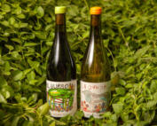 El Burro y La Oveja 2021 - Vinos Naturales