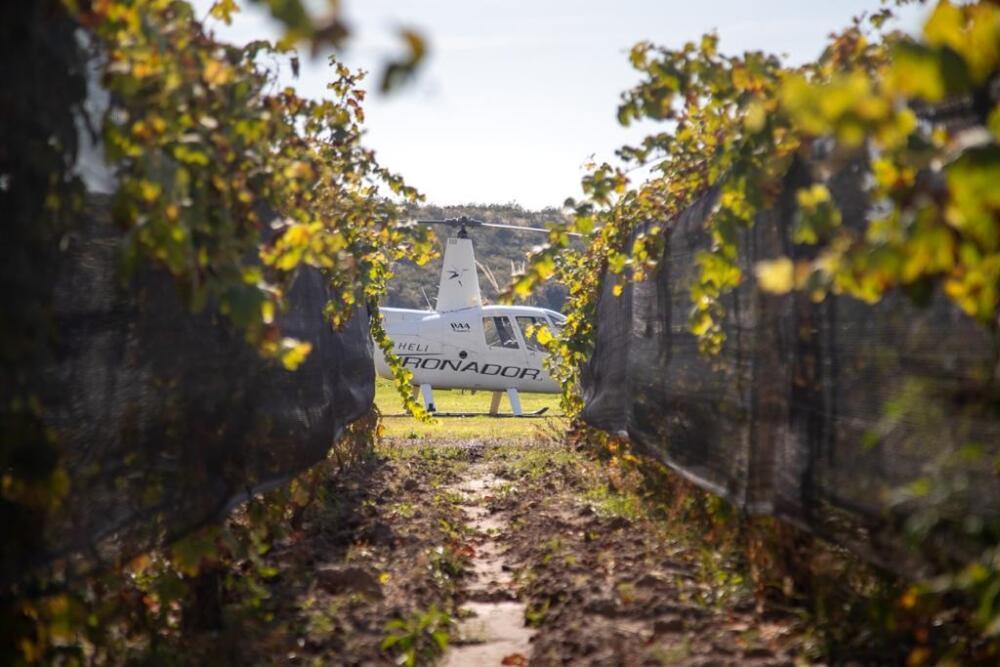 Este invierno lo nuevo de Mendoza para disfrutar el vino entre viñedos está enDurigutti Family Winemakers (1)