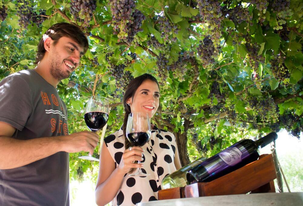 La Ruta del Vino Tucumano - Bodegas y viñedos Finca la silvia , bodega
