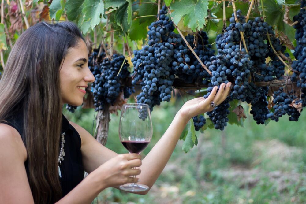 La Ruta del Vino Tucumano - bodega artesanal Chico Zossi - ruta 40