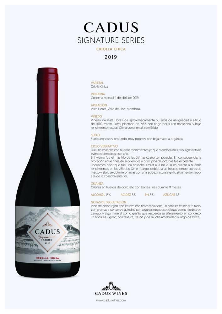 Uva criolla: un vino que continúa escribiendo su historia