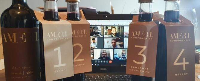 Ameri Single Vineyard Red Blend 2019 y sus Componentes