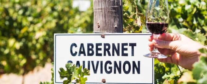 Día del Cabernet Sauvignon 2021