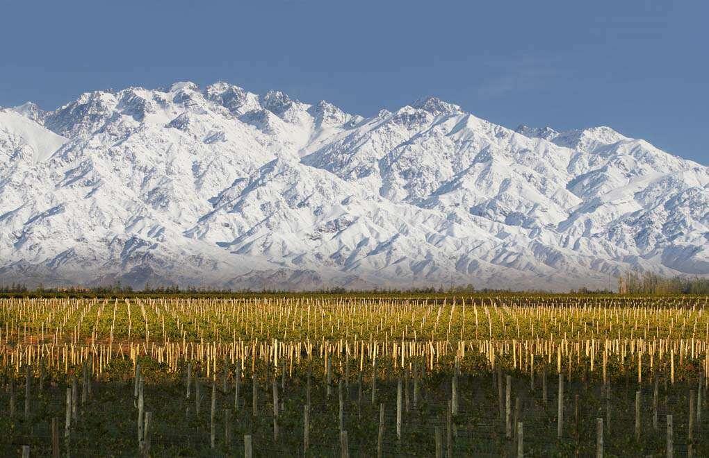 Domaine Bousquet se une como Miembro Fundador de Sustainable Wine Roundtable